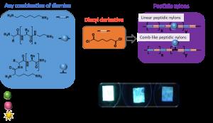 Turning peptides into bioactive nylons